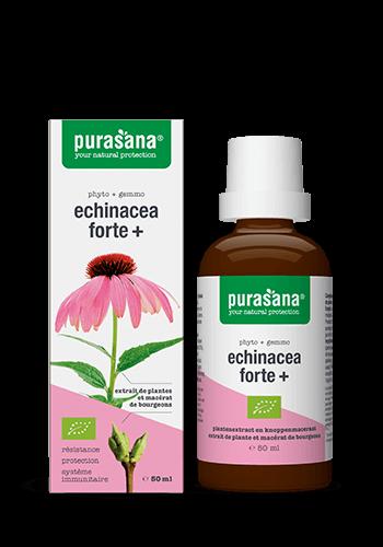 Echinacea Forte 50ml