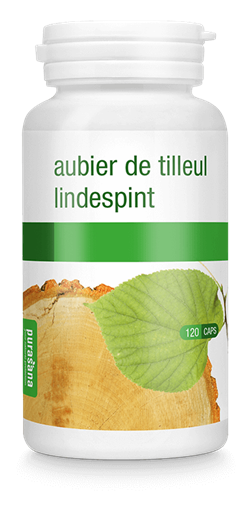 Lindespint